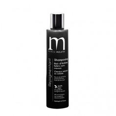 Shampooing repigmentant naturel NOIR D'ANILINE 200ml