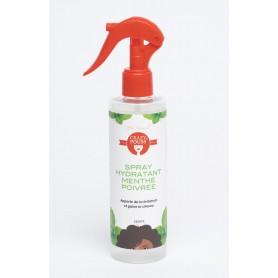 Spray hydratant à la MENTHE POIVRÉE 250ml