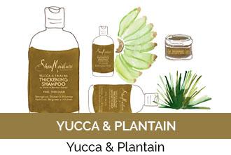 Découvrez la gamme Yucca & Plantain